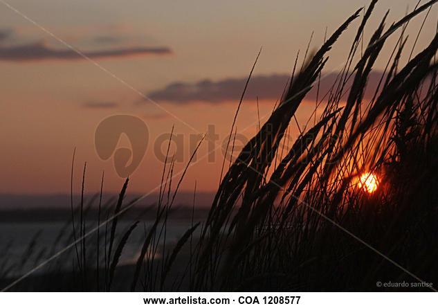 Se esconde el sol Nature Color (Digital)