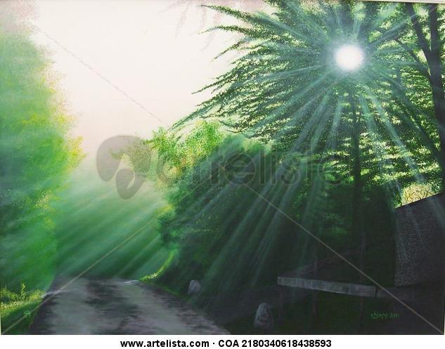 j11052 luz da alma