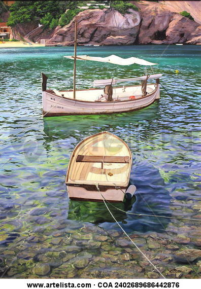 barcas en cala vadella 1 (ibiza)