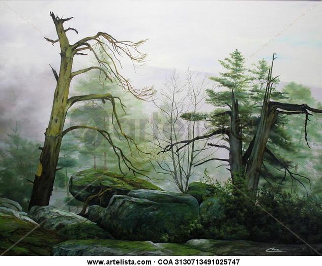 árboles en la niebla 1 (castroviejo)