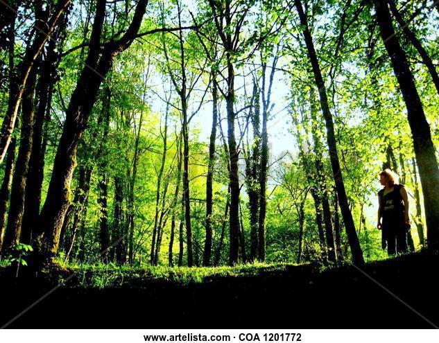 Verdes Nature Color (Digital)