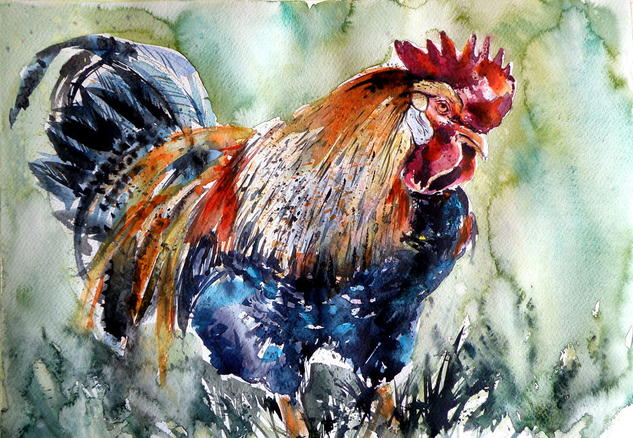 Rooster Papel Acuarela Animales