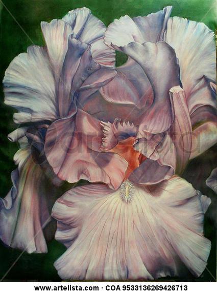 iris mary france