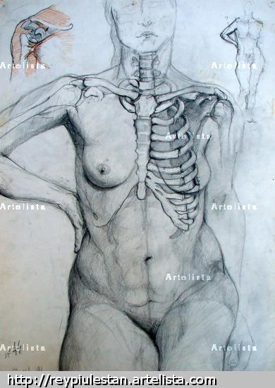 Cuaderno de Anatomia 2 Lápiz