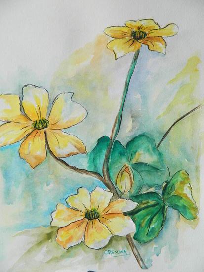 Caltha Palustri Papel Floral Acuarela