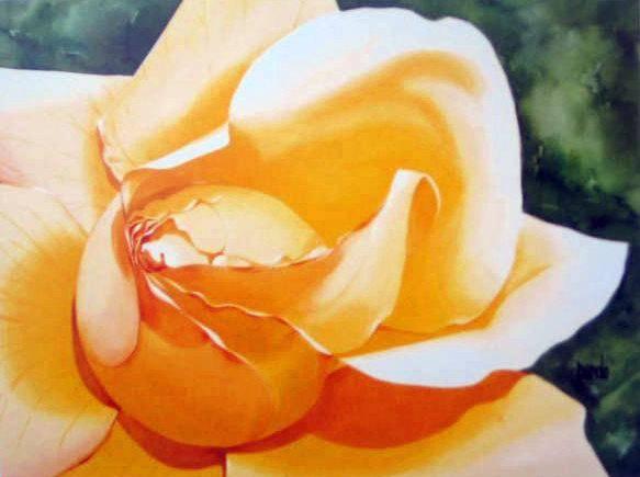 Rosa Papel Acuarela Floral