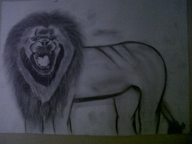leon indomable Otros Lápiz (Negro) Animales