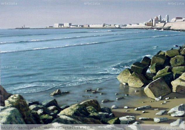 Campo del sur desde la playa santa maria del mar