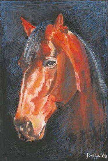 HORSE WITH NO NAME Papel Gouache Animales