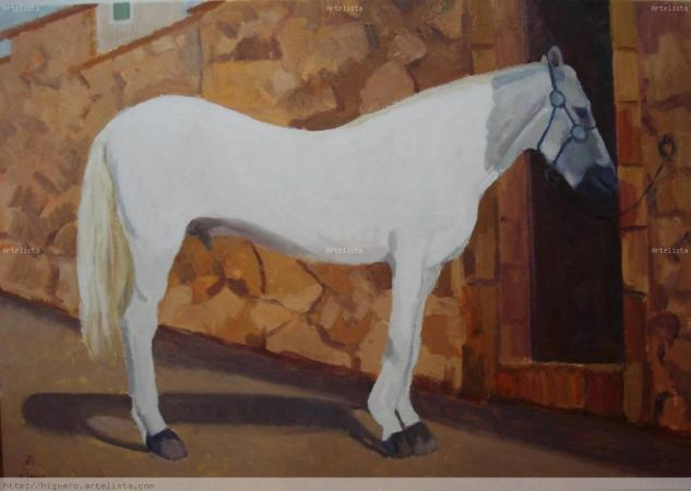 caballo blanco Óleo Tela Animales