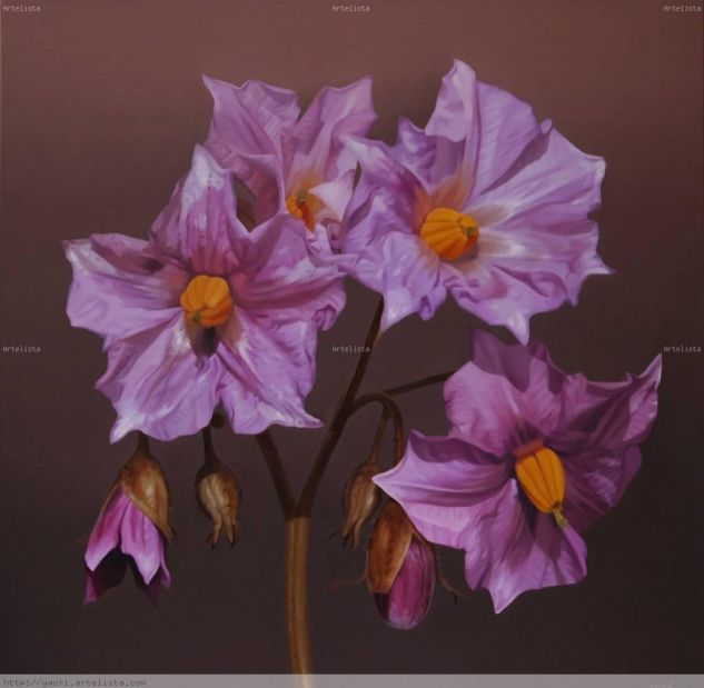cesar flor: