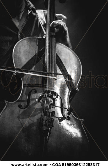 violonchelo Black and White (Digital) Other Themes
