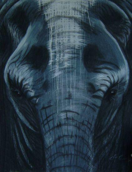 Elephant II Acrílico Lienzo Animales