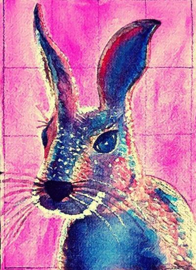 Conejo Animales Acuarela Cartulina