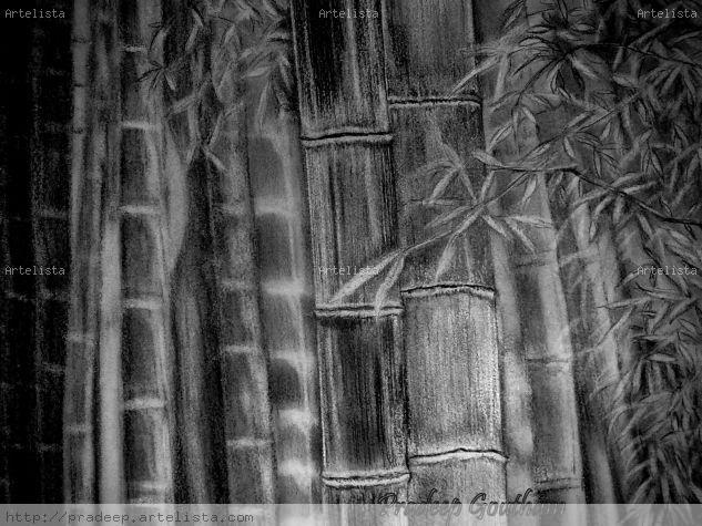 Dawn of the woods Papel Grafito Otros