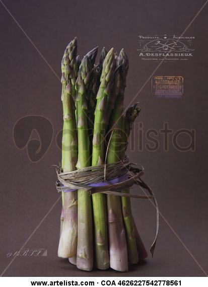 Asparagus y los logos franceses. Color (Digital) Bodegones