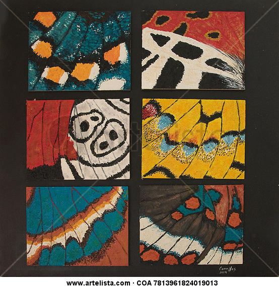 6 papallones