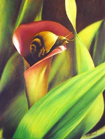 el caracol Oil Canvas Animals