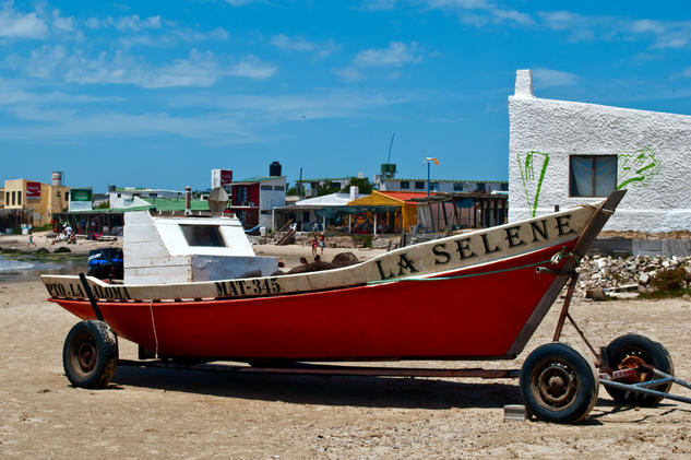 La Selene Viajes Color (Digital)
