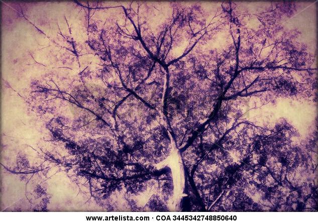 el arbol púrpura   the purple tree