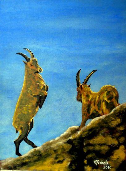 Steinbock Canvas Acrylic Animals