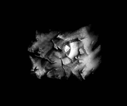 """SubCon: """"Sin titulo 2"""" Other Themes Alternative techniques"""