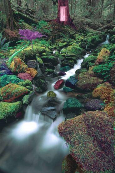 river house club Naturaleza Color (Digital)