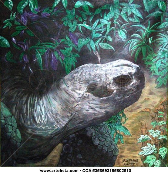 Tortuga Terrestre Gigante de Galápagos. Lienzo Acrílico Animales
