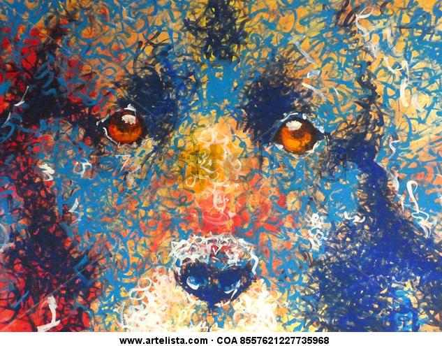 Ojos de Perro Azul Otros Acrílico Animales