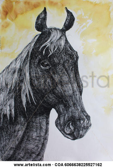Horse Head 28  Tinta