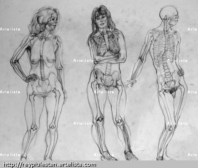 Cuaderno de Anatomia 3 Lápiz