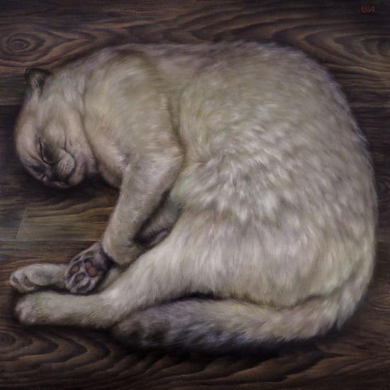 Otto durmiendo Animales Óleo Tabla