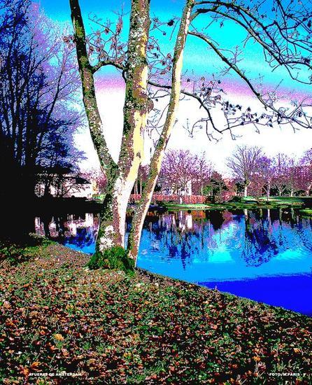 PAISAJE EN AMSTERDAM Color (Digital) Naturaleza