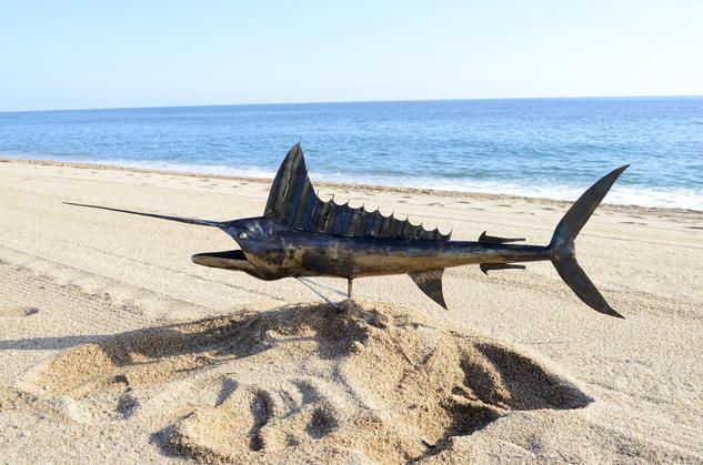Pez espada  Hierro Figurativa
