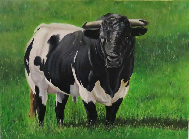 Toro en el Campo Lienzo Óleo Animales