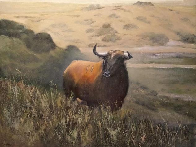 Toro Bravo en la dehesa extremeña Animales Óleo Lienzo