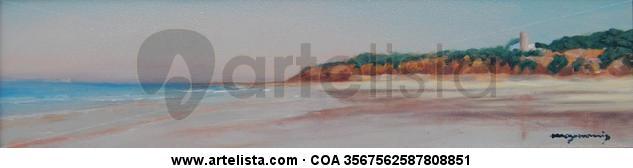 paisaje de la playa de la barrosa