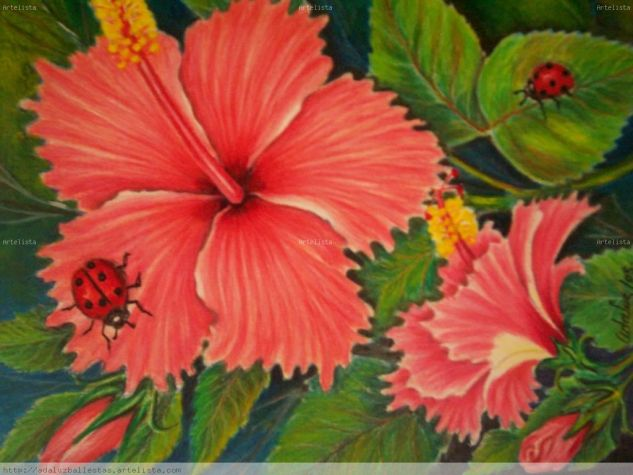 cayena 1 Media Mixta Papel Floral