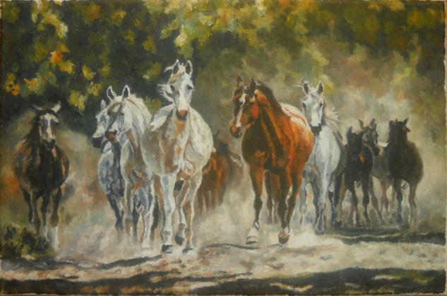tabun koni arabskich Lienzo Animales Óleo