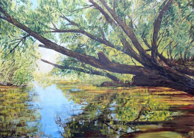 Reflejos en el rio Paisaje Acrílico Lienzo