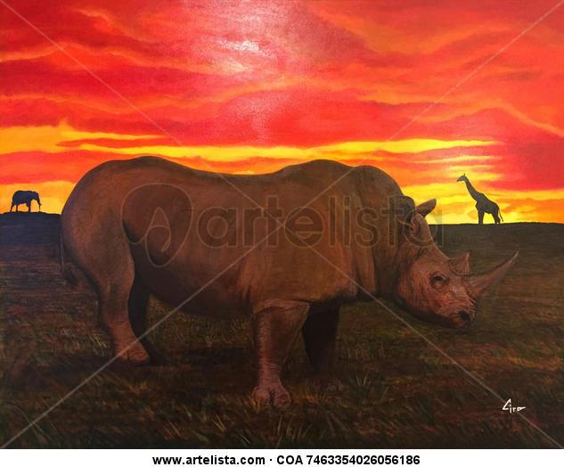 africa Lienzo Acrílico Animales