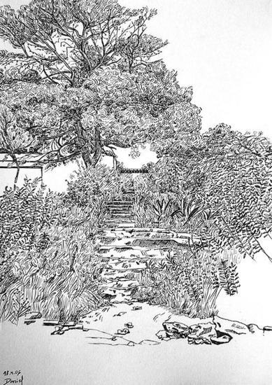 Pinos con arbustos de Vilanova Paper Ink Landscaping