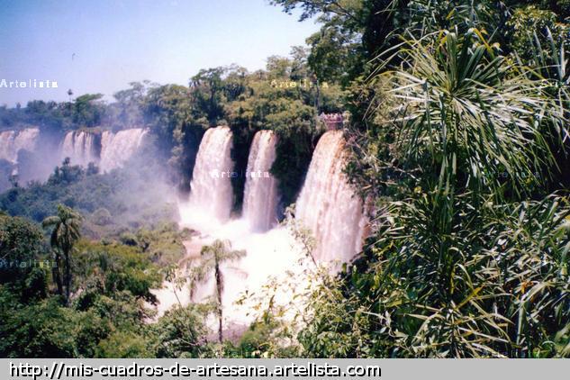 Iguazú entre selva Naturaleza Color (Química)