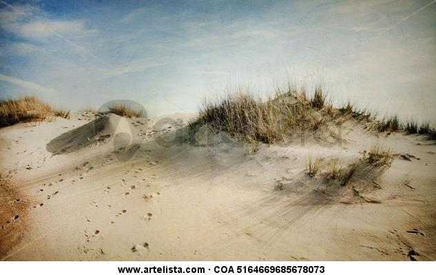 dunas y huellas.