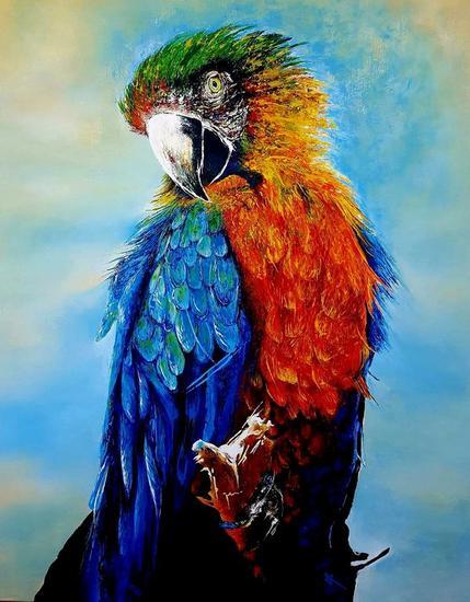 GUACAMAYA Animals Acrylic Canvas