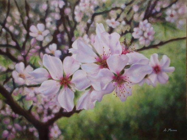 flores de almendro Lienzo Óleo Floral