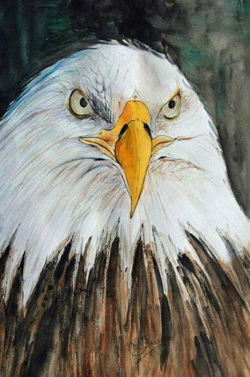 Águila Acuarela Papel Animales