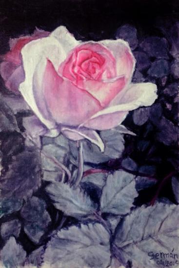 rosa ROSA Floral Óleo Lienzo