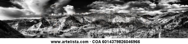 Valle del Cocora Blanco y Negro (Digital) Naturaleza