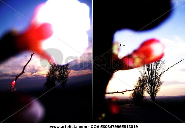 AZUL Color (Digital) Naturaleza